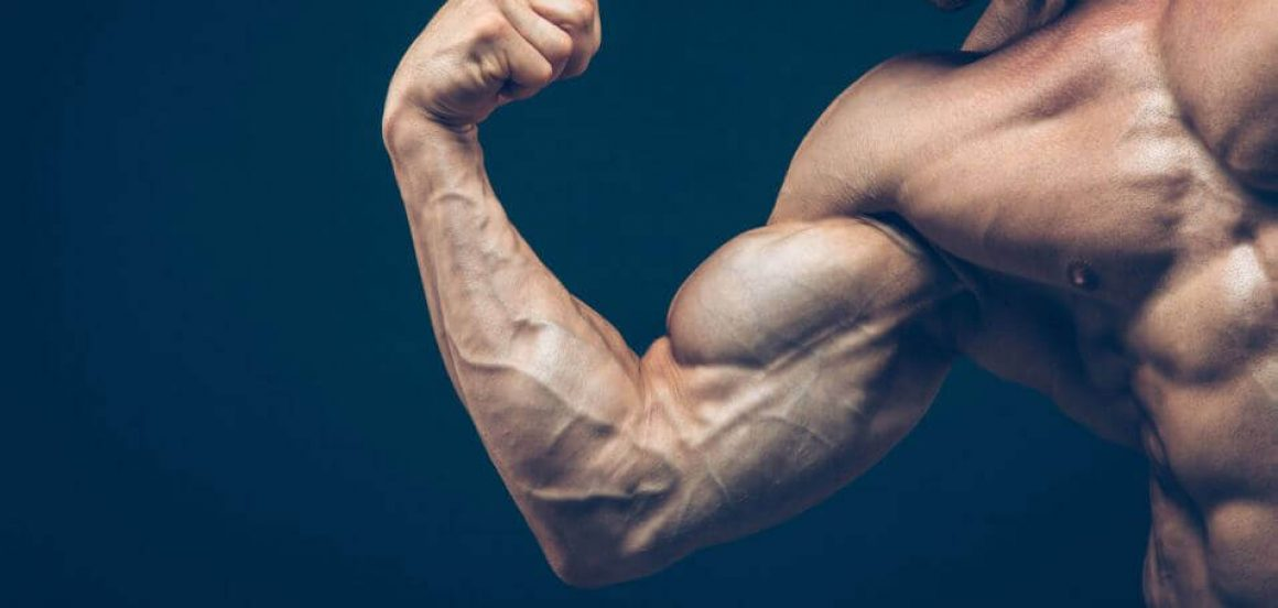 sore-muscle-muscle-growth